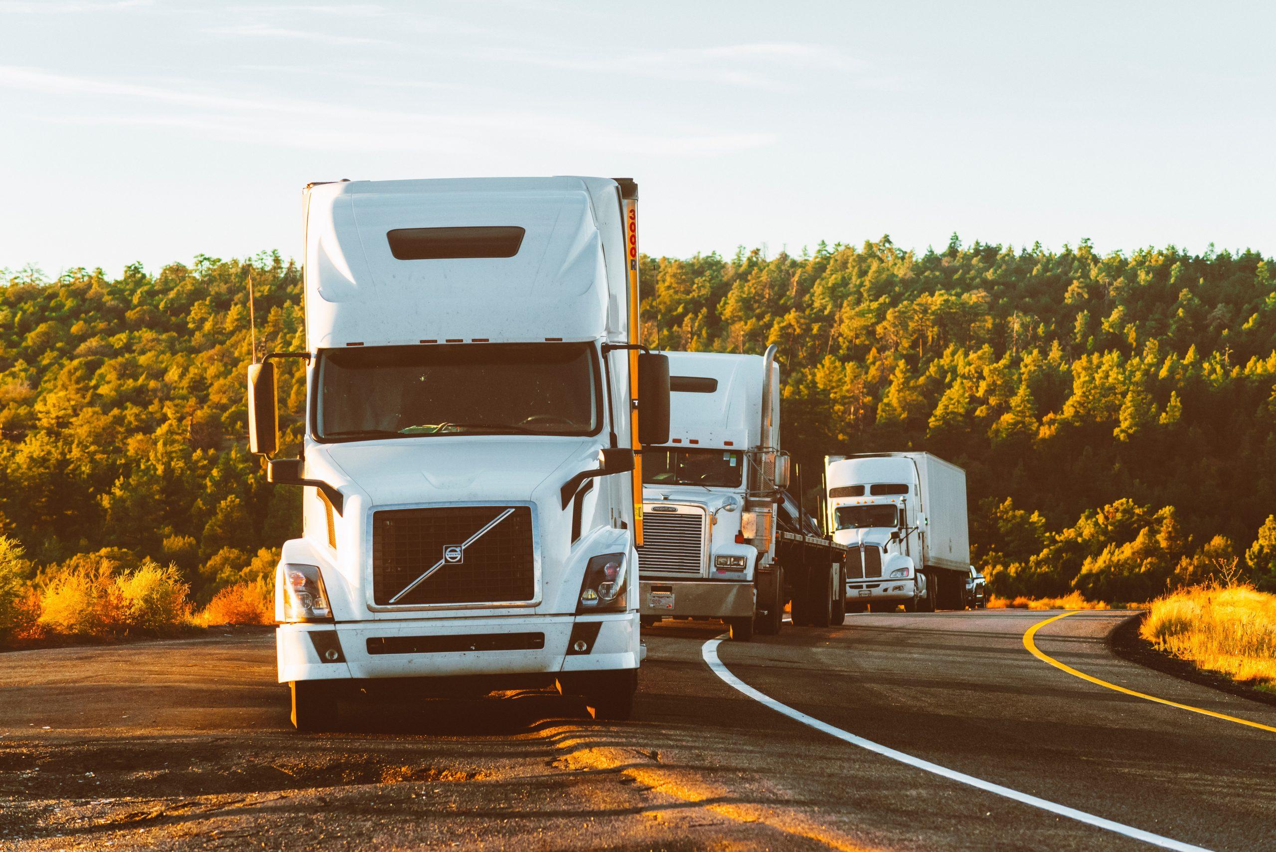 logistics software, freigh management system